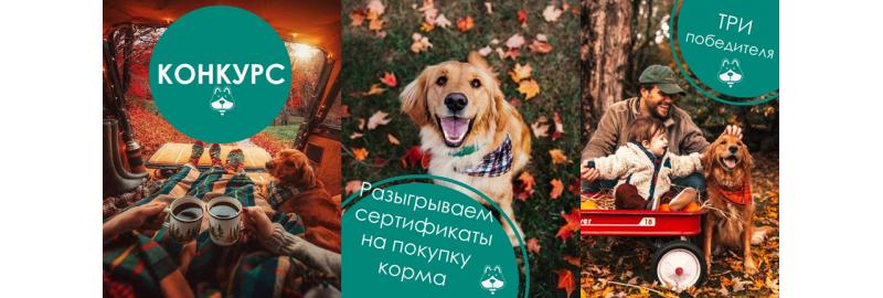Корм для собак Brit: Купить в Самаре | Цены на Aport