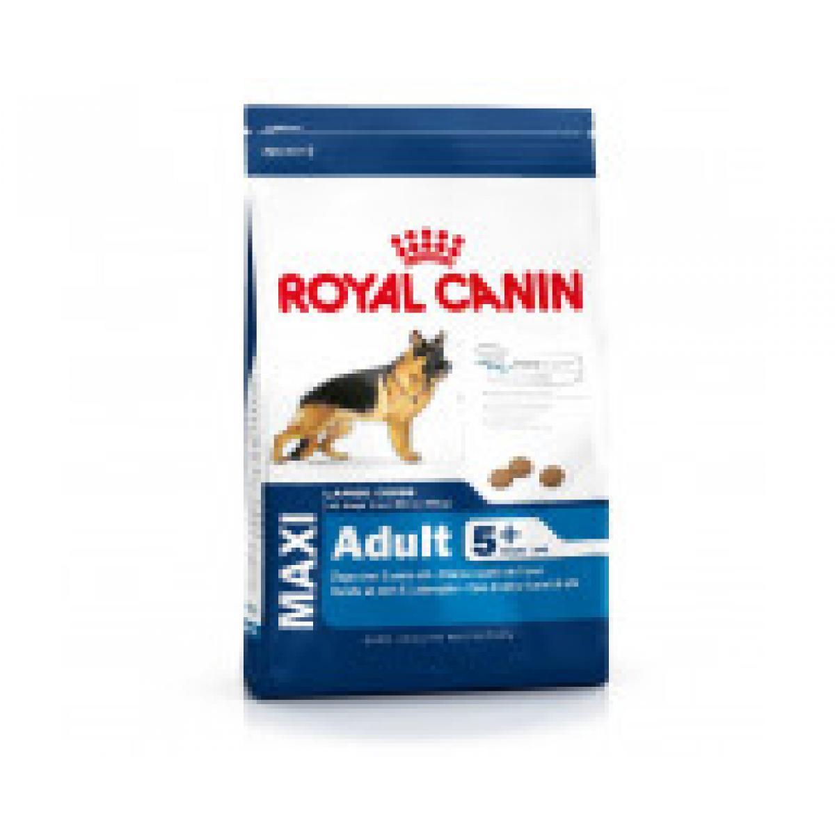 Лучший корм для кошек и собак Royal Canin. Нюансы выбора